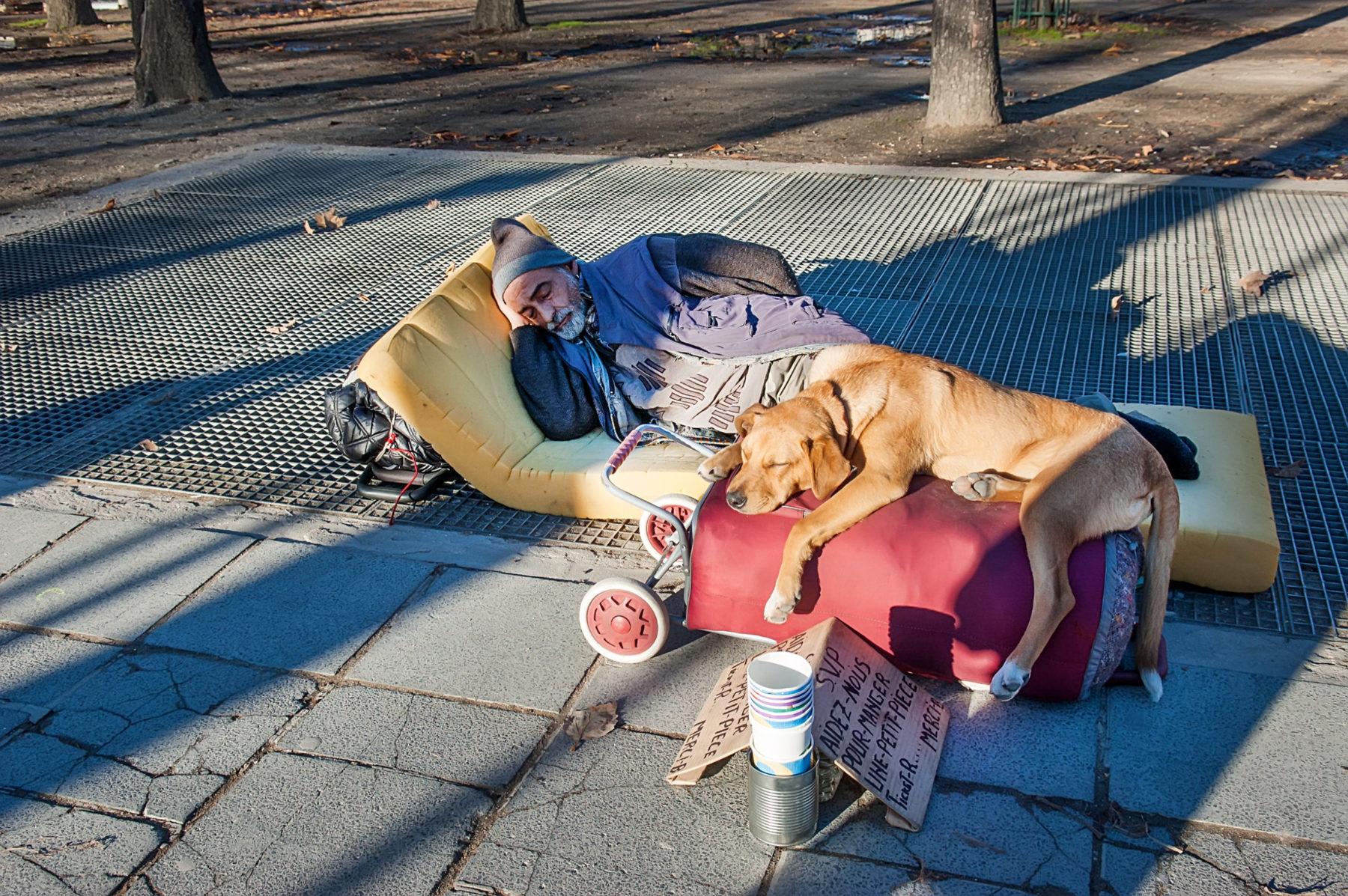Un sans-abris dans la rue avec son chien. Photo d'illustration
