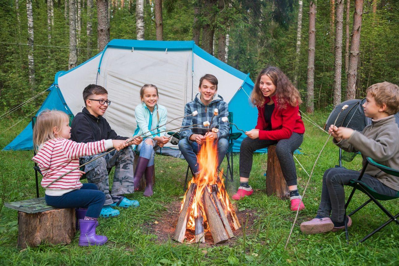 des guimauves en camping dans une forêt d'été. Les tentes de camping sont vues en arrière-plan. Vacances d'été en plein air