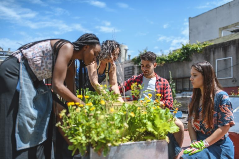 Une équipe de personnes s'entraidant pour faire un potager sur un toit