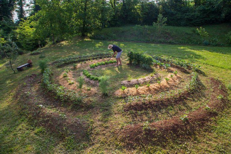 Un jeune homme cultivant son jardin en permaculture