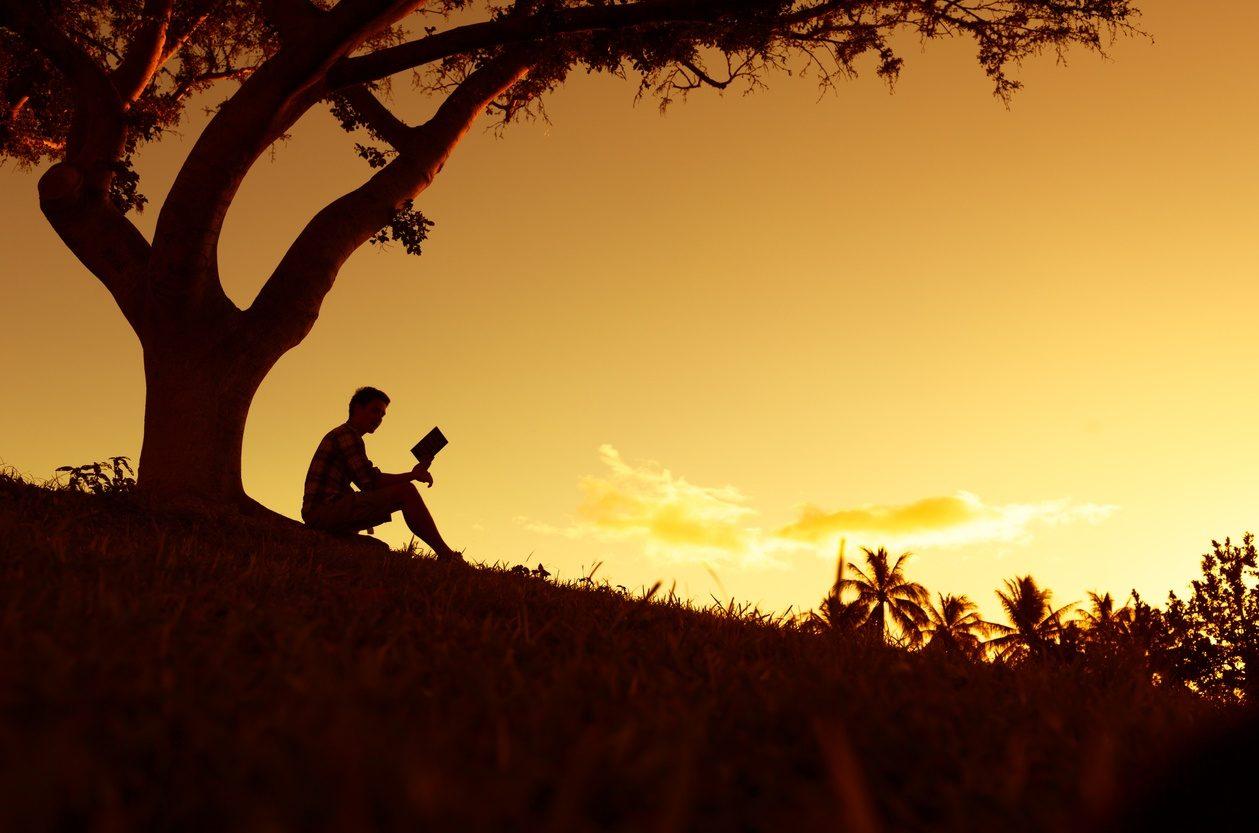 Un homme lisant sa Bible sous un arbre avec un soleil couchant